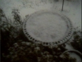 070208 Snow Bird Bath.JPG