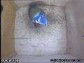 20130403-inside-inspection.jpg